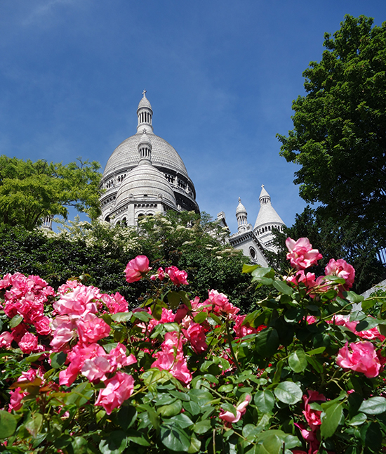 A rosie view of the Sacre Coeur cathedral in Paris